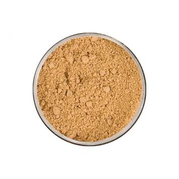 Jane Iredale Amazing Base Loose Mineral Powder - Satin